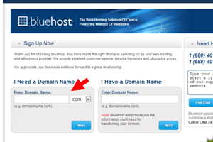 Bluehost- need a Domain Name- have a domain name